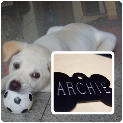officially Archie