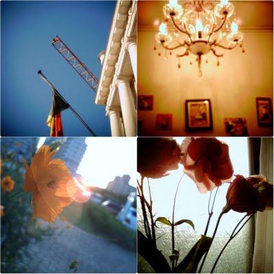 Nico Digi flickr