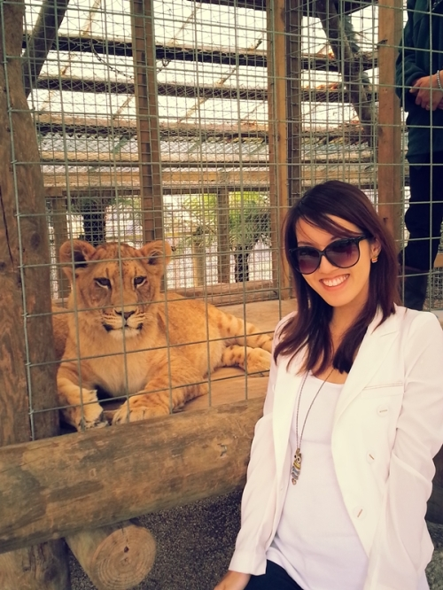 with lion cub
