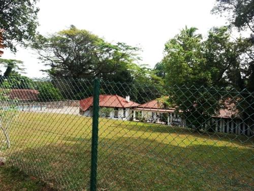 adam park 4